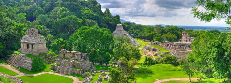 forntida tempel för mayamexico palenque arkivfoton