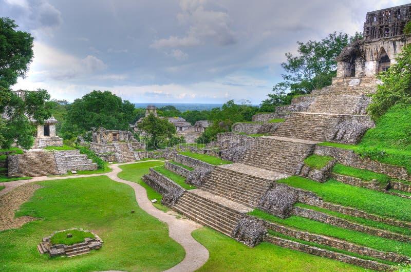 forntida tempel för mayamexico palenque royaltyfri bild