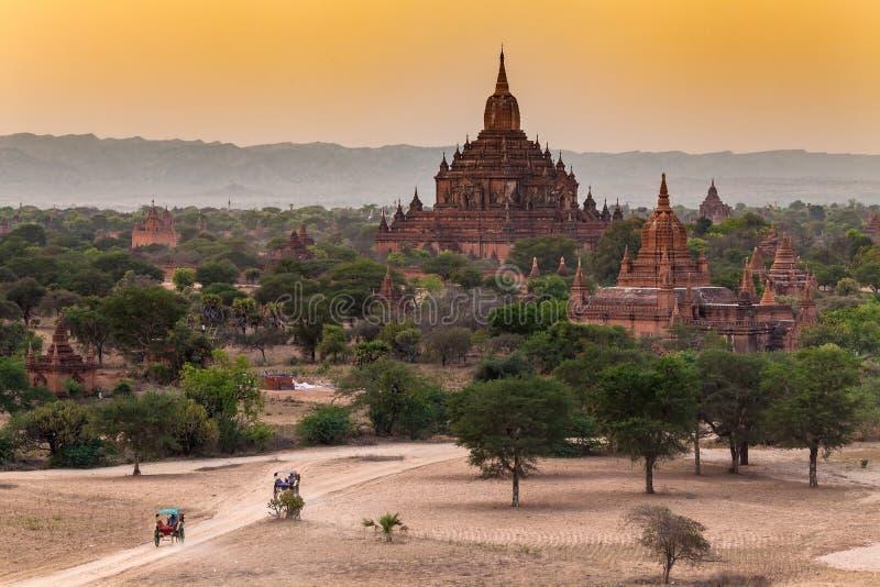 Forntida tempel och vagnar på solnedgången i Bagan, Myanmar royaltyfri fotografi