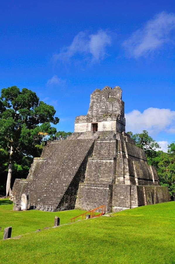 forntida tikal guatemala mayatempel royaltyfria foton