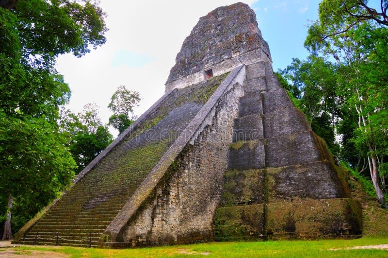 forntida tikal guatemala mayatempel royaltyfri foto