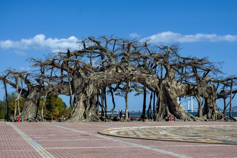 Forntida trädkopia på en fyrkant mot blå himmel royaltyfria foton