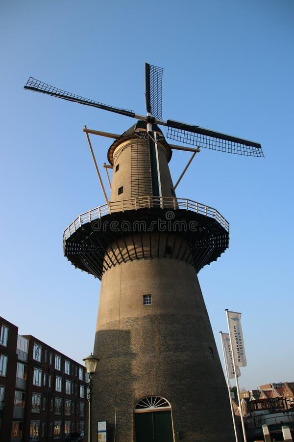 Forntida väderkvarn i centret av Schiedam i Nederländerna royaltyfria bilder