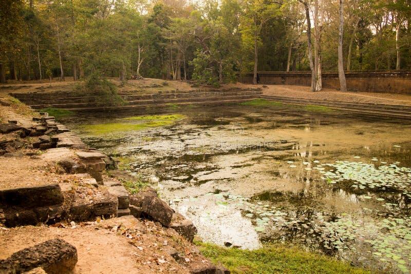 Forntida vattenpöl i Angkor Thom, Cambodja royaltyfri fotografi