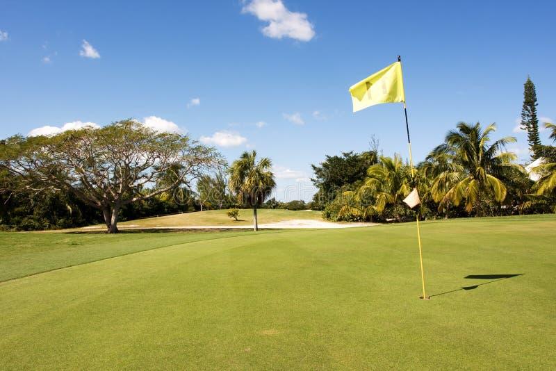 Foro 11 di golf fotografia stock