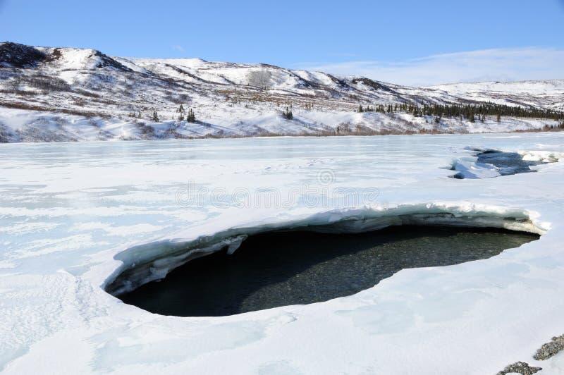 Foro in ghiaccio del fiume dell'Alaska durante il disfacimento della sorgente immagine stock libera da diritti