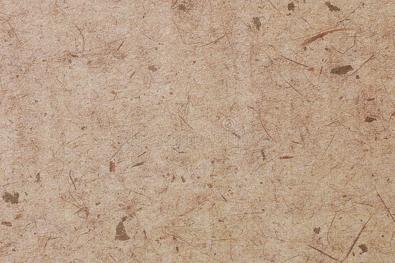 Forre texturas imagens de stock royalty free