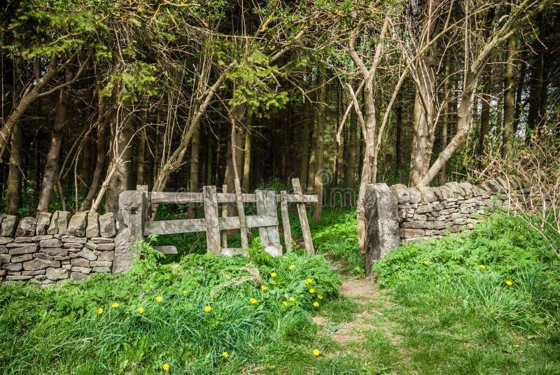 Download Forrest Gate Stock Images - Image: 36935014