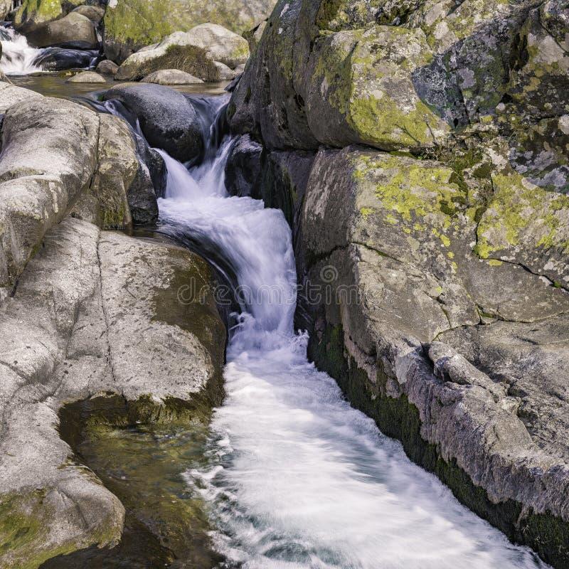 Forsar av en flod Gredos arkivbilder