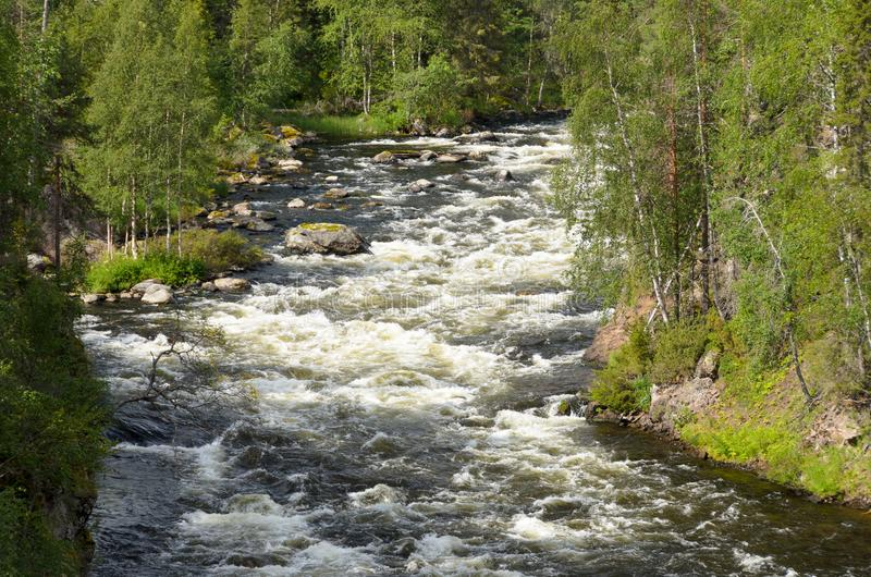 Forsar på den lösa floden royaltyfri foto