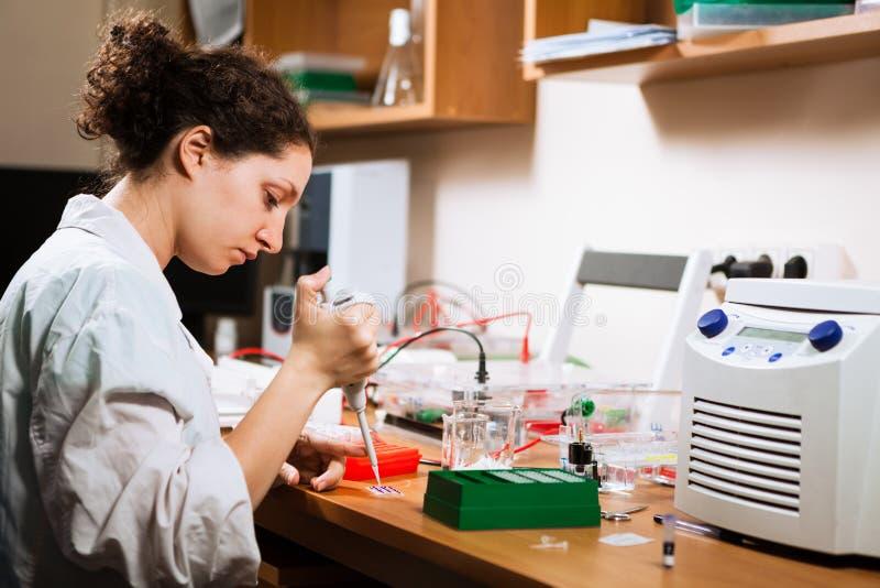 Forscher arbeitet am Labor lizenzfreie stockfotos