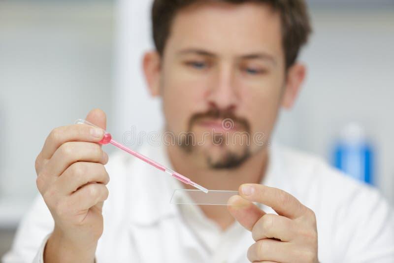 Forscher bei der Arbeit im Labor mit Blutpipette lizenzfreie stockbilder