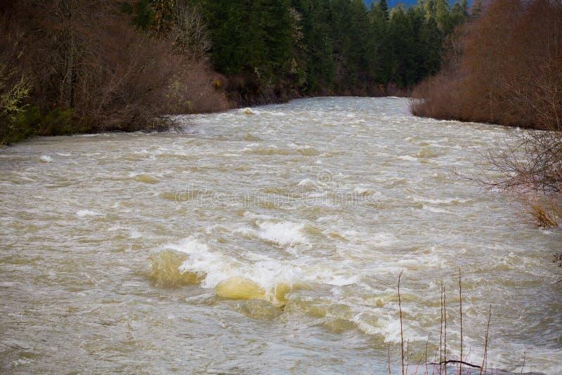 Forsflod för högt vatten royaltyfri fotografi