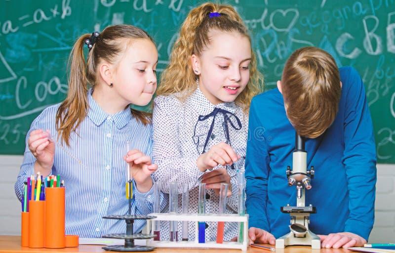 Forskare f?r sm? ungar som tj?nar kemi i skolalabb barn little vetenskap Kemivetenskap biologiexperiment royaltyfria bilder