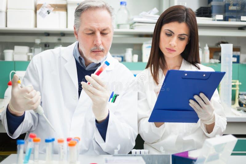 Forskare på arbete i ett laboratorium arkivbilder