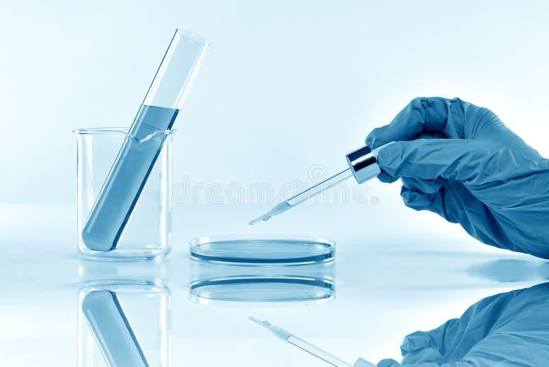 Forskare som gör forskning och utveckling i vetenskapligt laboratorium royaltyfria bilder