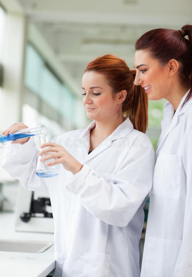 Forskare som häller flytande i en Erlenmeyer flaska arkivbild