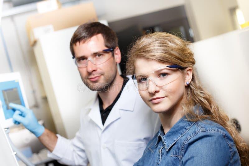 Forskareforskning i en labbmiljö royaltyfri bild