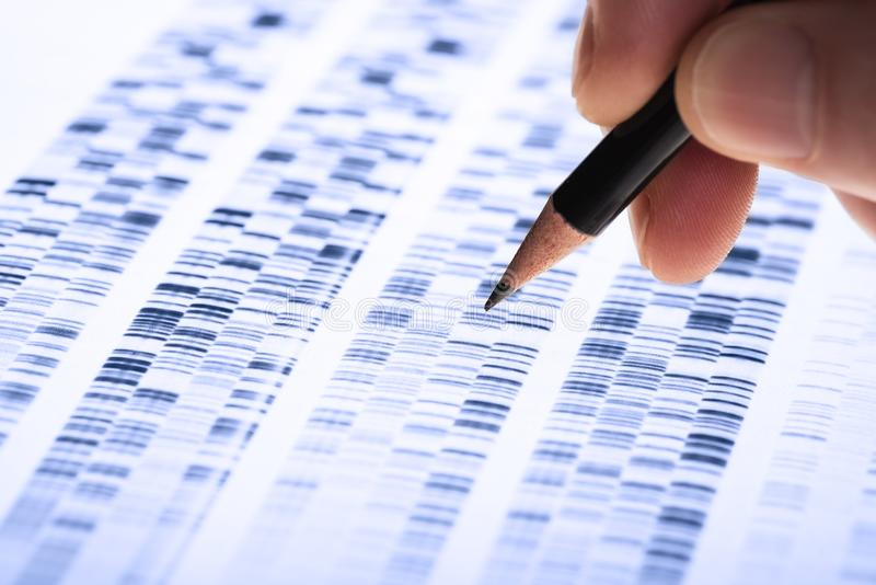 Forskaren analyserar DNA stelnar royaltyfria foton