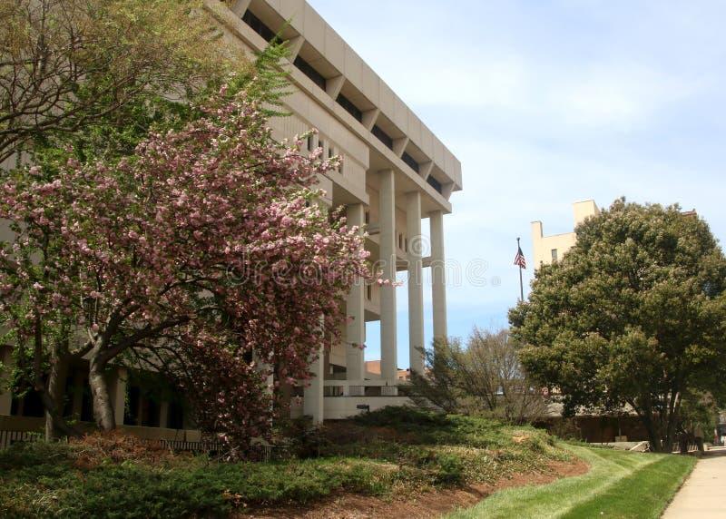 Forsyth County Hall von Gerechtigkeit in Winston-Salem, North Carolina lizenzfreie stockfotografie