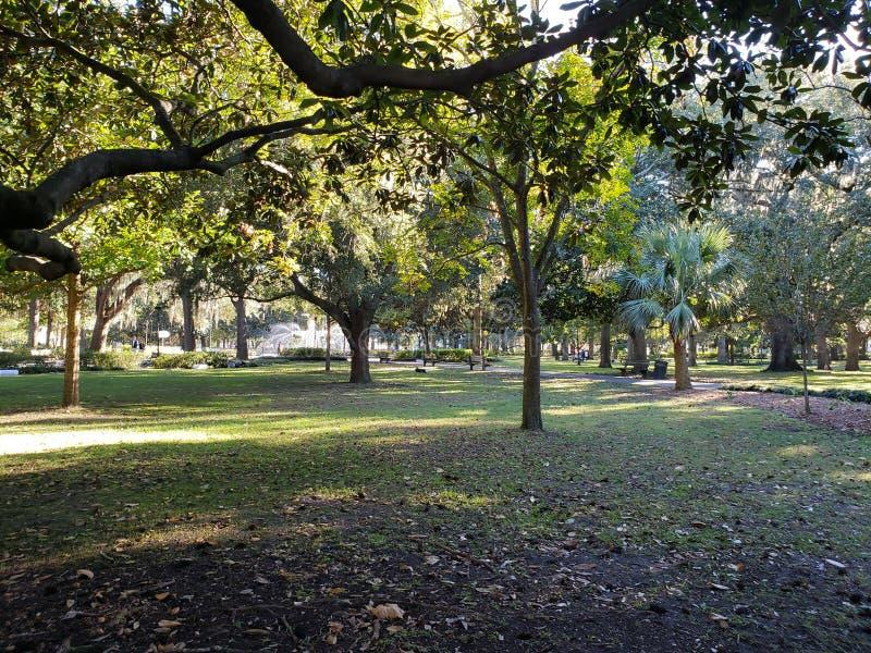 Forsyth parkerar Savannah Georgia arkivfoton