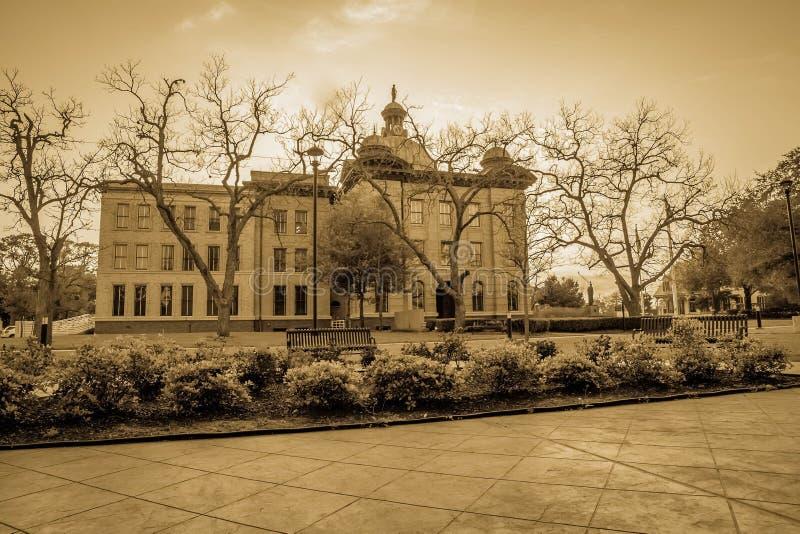 Fort Bend County domstolsbyggnad i sen vinter royaltyfria bilder