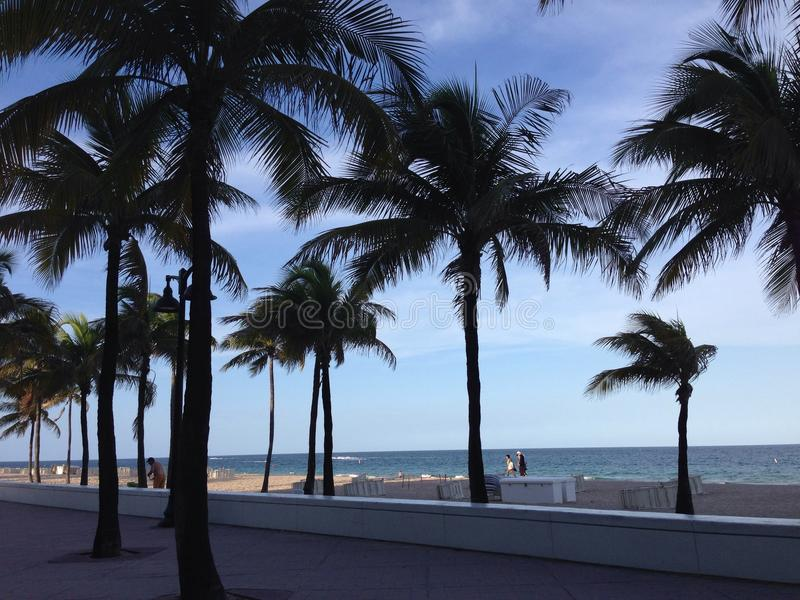 Fort Lauderdale fotografía de archivo libre de regalías