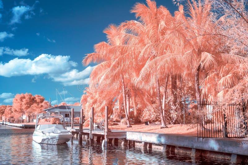 Fort Lauderdale som är intracoastal i Infrared royaltyfri foto