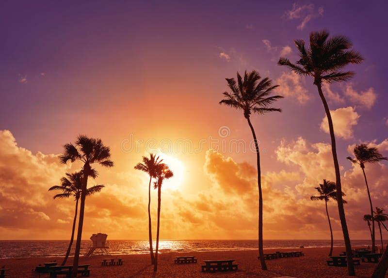 Fort Lauderdalestrandsoluppgång Florida USA royaltyfria bilder