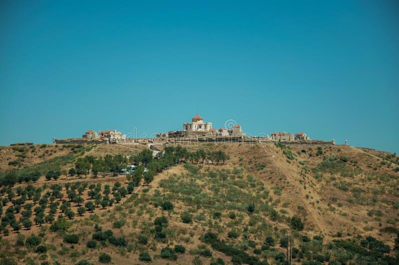 Fort na fortecy zakrywającym zielonymi drzewami oliwnymi wzgórze fotografia royalty free