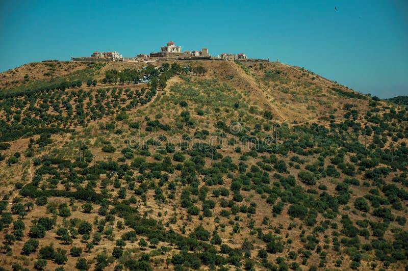 Fort na fortecy zakrywaj?cym zielonymi drzewami oliwnymi wzg?rze fotografia stock