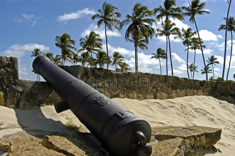 Fort Orange, cannon and palm trees, Brazil. A piece Dutch history in the north east Brazilian tropics, Fort Orange. The best preserved building of the Dutch royalty free stock photos