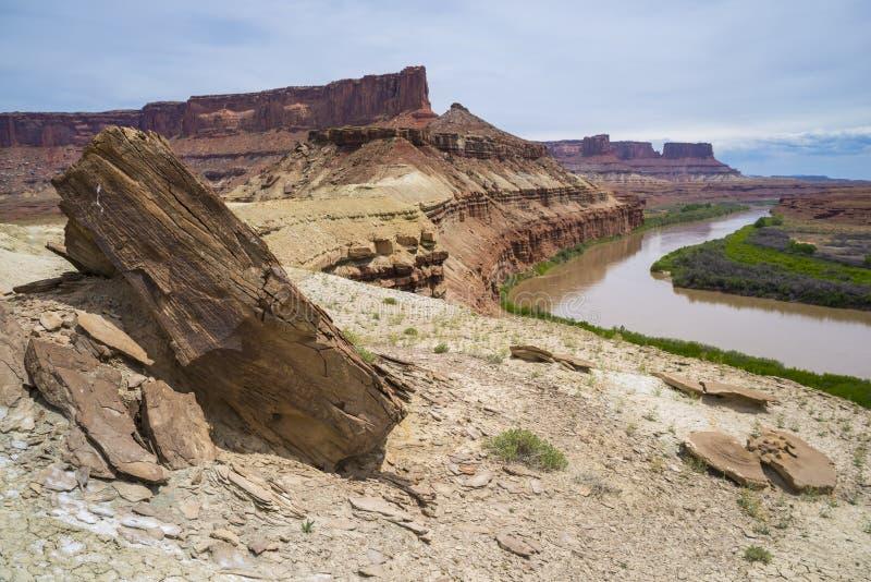 Fort-Unterseiten-Hinterweiß Rim Road Utah lizenzfreies stockbild