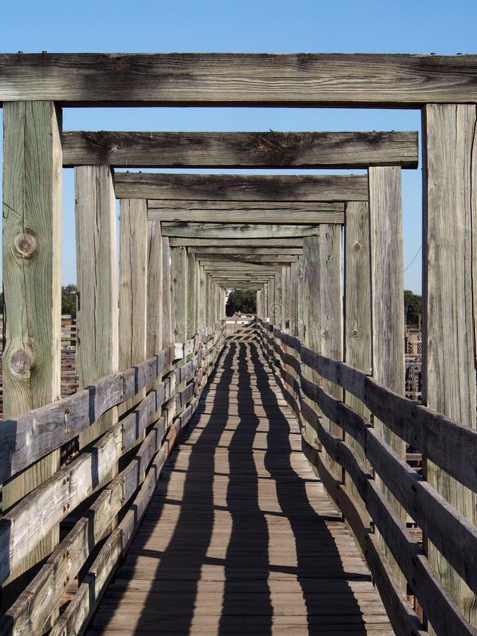 Fort Worth Stockyards Walkway arkivfoton