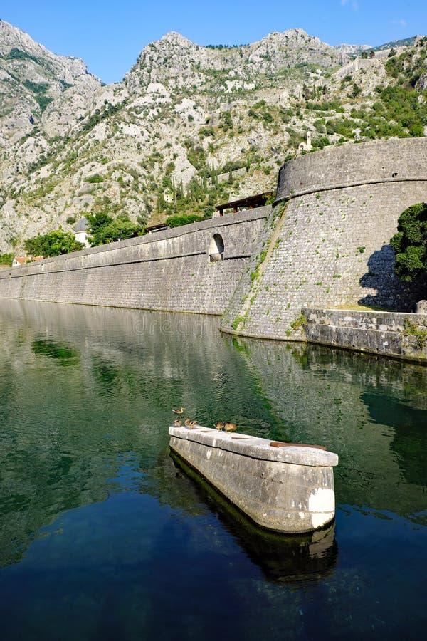 Fortalecimientos medievales de Kotor, Montenegro fotografía de archivo libre de regalías