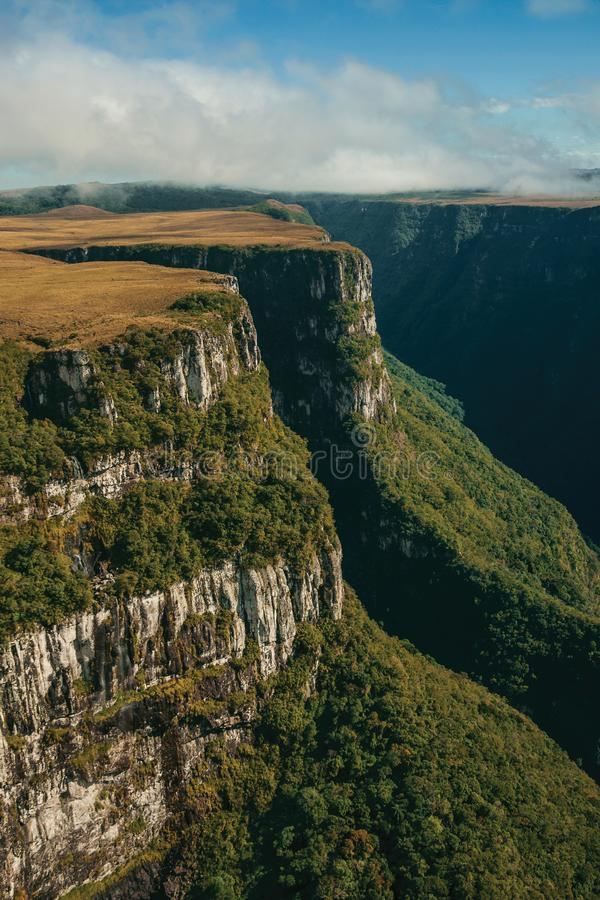 Fortaleza Canyon with steep cliffs and plateau. Fortaleza Canyon shaped by steep rocky cliffs with forest and flat plateau covered by dry bushes near Cambara do stock image
