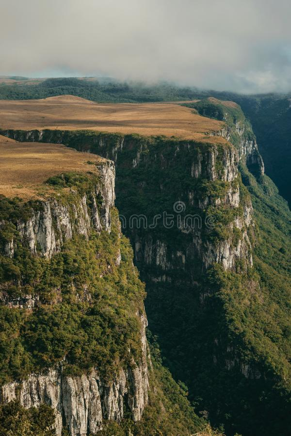Fortaleza Canyon with steep cliffs and plateau. Fortaleza Canyon shaped by steep rocky cliffs with forest and flat plateau covered by dry bushes near Cambara do royalty free stock photography