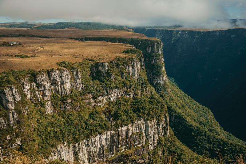 Fortaleza Canyon with steep cliffs and plateau. Fortaleza Canyon shaped by steep rocky cliffs with forest and flat plateau covered by dry bushes near Cambara do stock photos