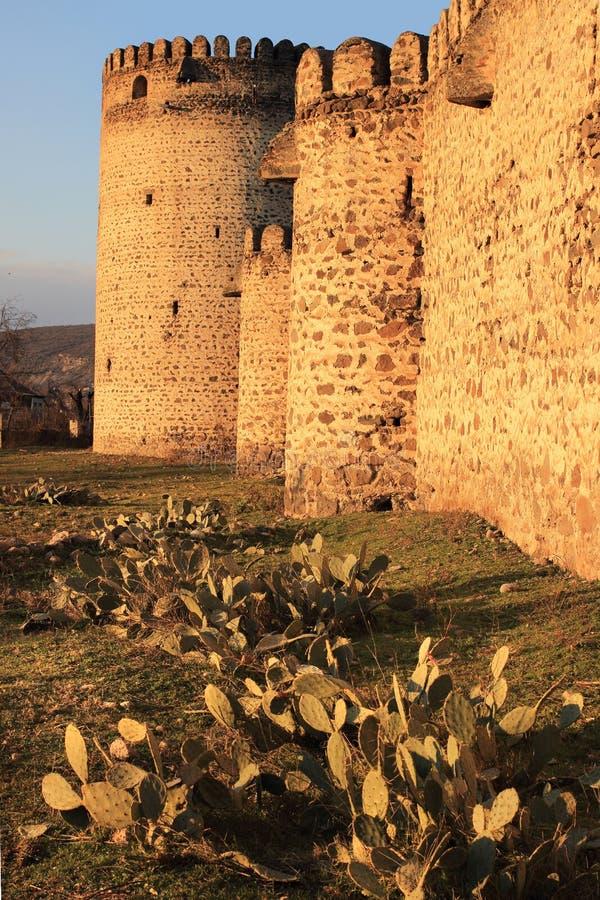 Fortaleza da rainha Darejan (Tamarisi) (Kvemo-Kartli, Geórgia) imagens de stock royalty free