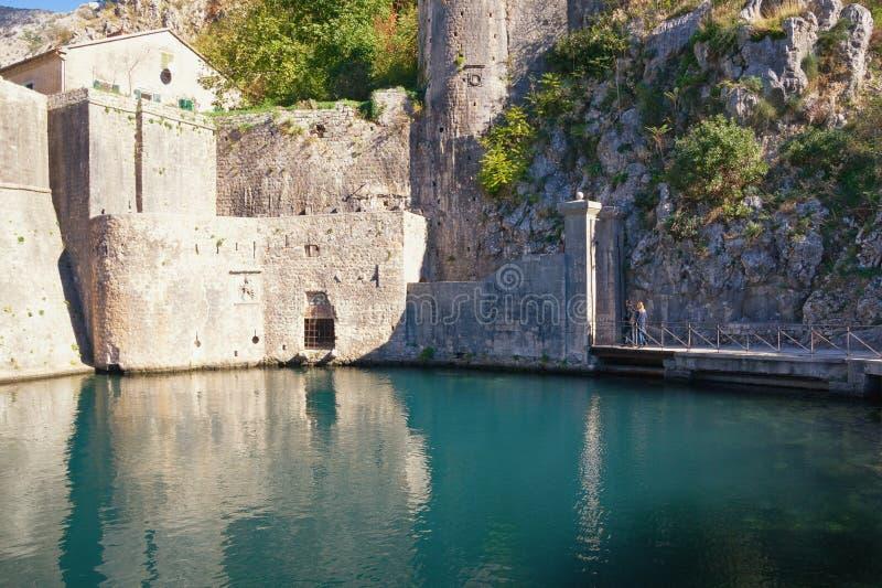 Fortaleza de la ciudad vieja de Kotor Vista de paredes y de la puerta meridionales de Gurdic montenegro foto de archivo