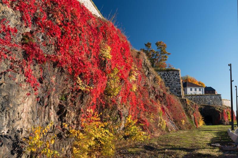 Fortaleza de Oslo Akershus en la última caída imágenes de archivo libres de regalías
