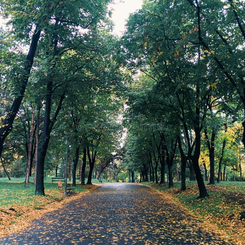 Fortaleza en el otoño fotografía de archivo