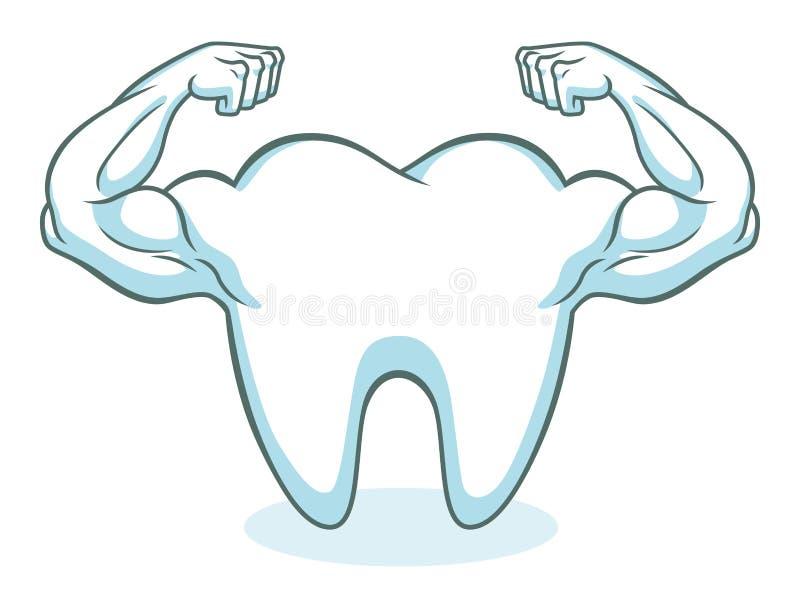 Forte dente sano illustrazione vettoriale