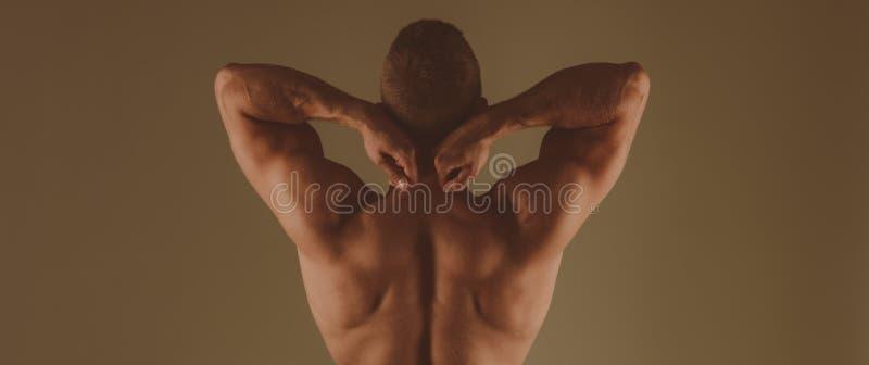 Forte e poderoso Fundo marrom traseiro muscular do homem Homem divino muscular do halterofilista atlético Dieta e aptid?o fotos de stock