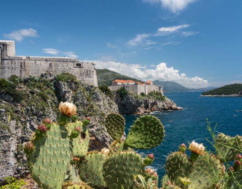 Forte Lawrence e paredes da cidade da cidade velha de Dubrovnik na Croácia fotos de stock