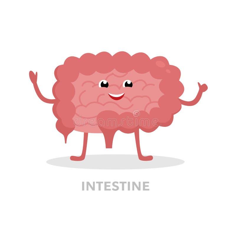 Forte personaggio dei cartoni animati sano dell'intestino isolato su fondo bianco Vettore felice degli intestini crassi e piccolo royalty illustrazione gratis