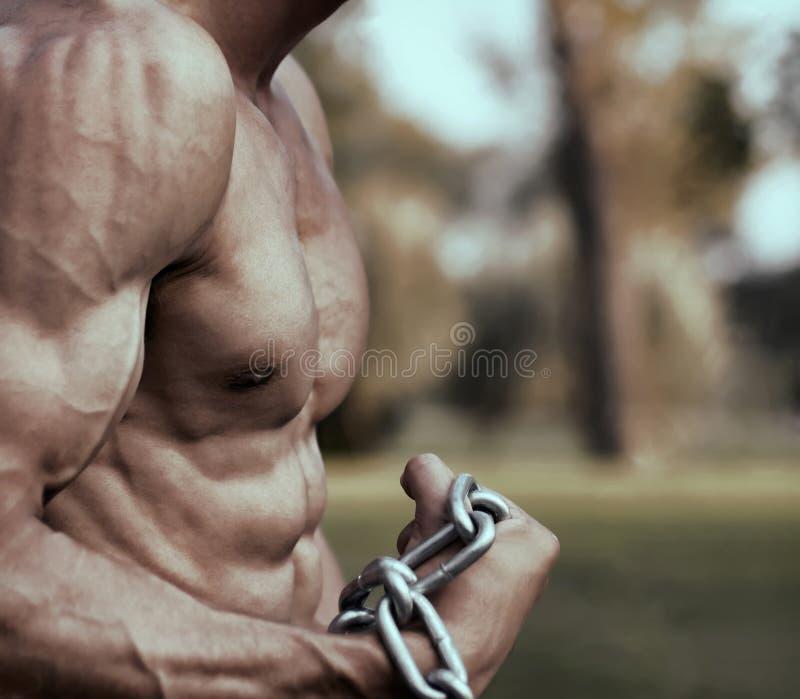 Forte rappresentazione atletica di Torso del modello di forma fisica dell'uomo Tipo sexy muscolare fotografia stock libera da diritti