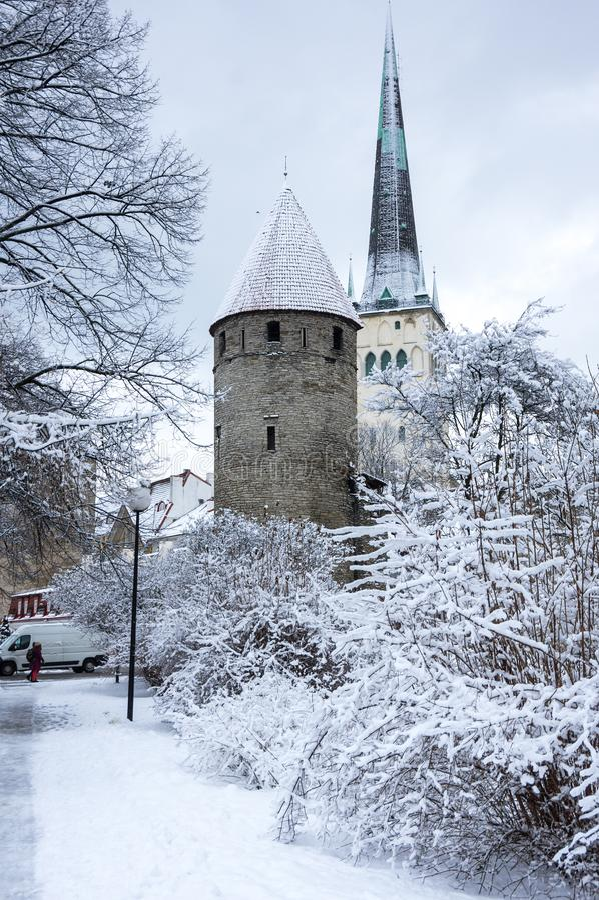 Forteca ściana Tallinn obrazy royalty free