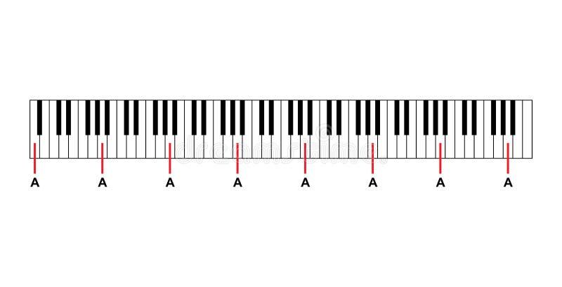 Fortepianowi akordy lub fortepianowe kluczowe notatki sporządzają mapę na białym tło wektorze ilustracja wektor