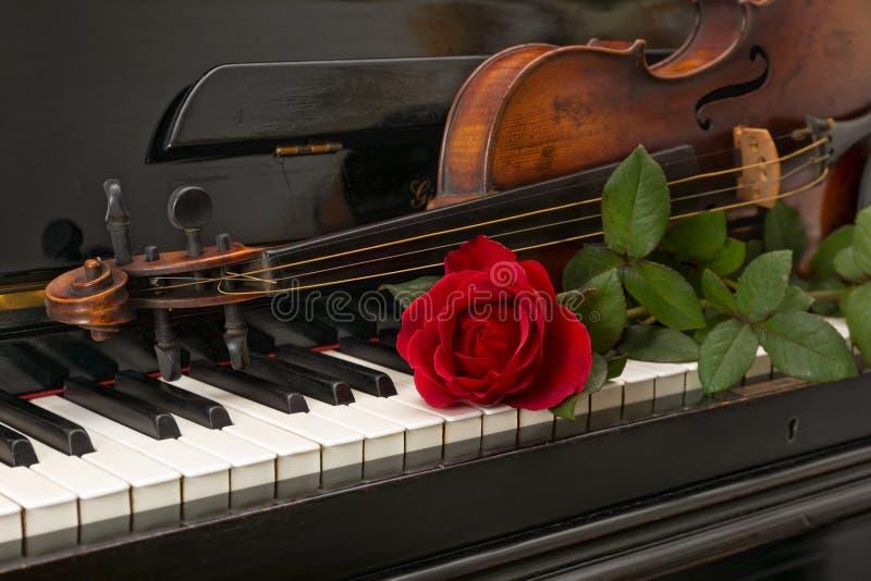 Fortepianowy czerwieni róży skrzypce obrazy stock